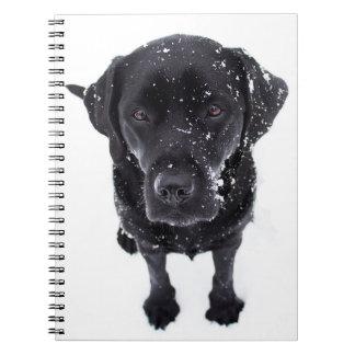 Black Labrador - Snow Dog Notebook