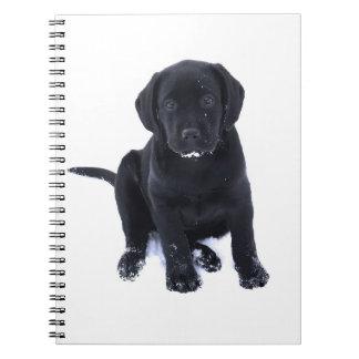 Black Labrador - Snow Puppy Notebook
