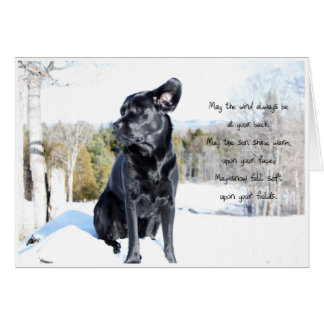 Black Labrador - Sun and Wind Card