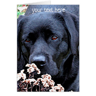 Black Labrador - Take Time Card
