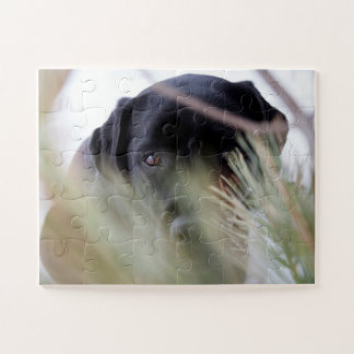 Black Labrador - Thru the Trees Jigsaw Puzzle
