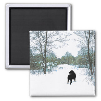 Black Labrador - Treasures Magnet