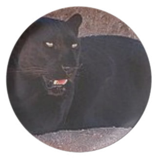 Black Leopard Party Plates