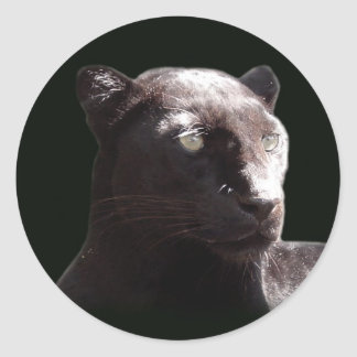 Black Leopard Portrait Classic Round Sticker