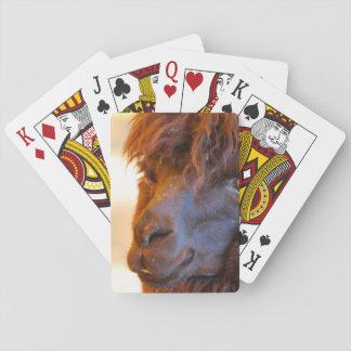 Black Llama Playing Cards