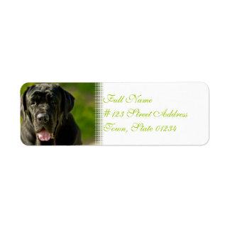 Black Mastiff Mailing Labels
