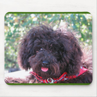 Black Miniature Poodle - JoJo Mouse Pad