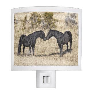 Black Mustang Stallions Night Light