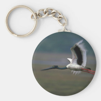Black-necked Stork in flight Key Chain