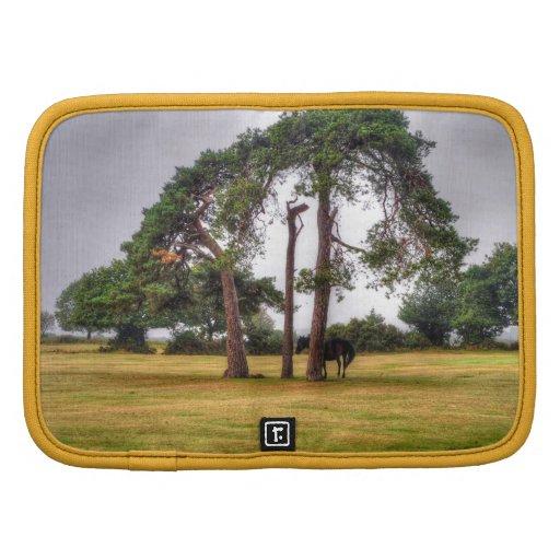 Black New Forest Pony & Tree - Wild Horse, England Folio Planner