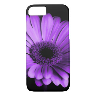 Black / Nighttime with Purple Gerbera Daisy Flower iPhone 7 Case