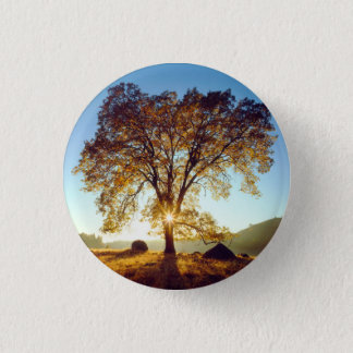 Black Oak Trees | Cleveland National Forest, CA 1 Inch Round Button