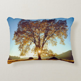 Black Oak Trees | Cleveland National Forest, CA Accent Pillow