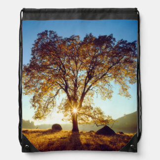 Black Oak Trees | Cleveland National Forest, CA Drawstring Bag