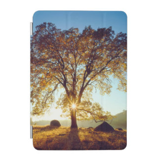 Black Oak Trees | Cleveland National Forest, CA iPad Mini Cover