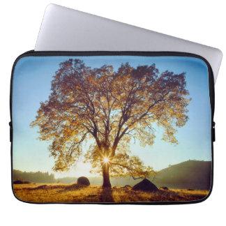 Black Oak Trees   Cleveland National Forest, CA Laptop Sleeve