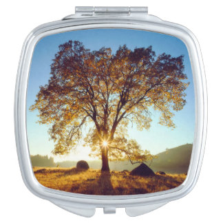 Black Oak Trees | Cleveland National Forest, CA Makeup Mirror