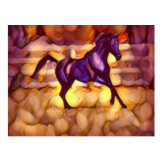 Black Onyx Arabian Horse Postcard