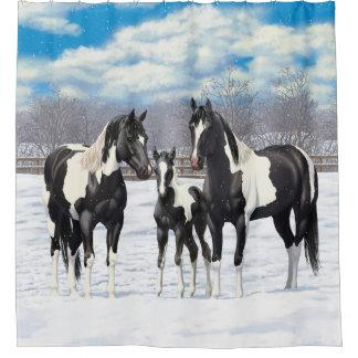 Black Paint Horses In Snow