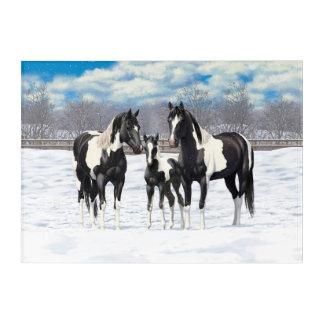 Black Paint Horses In Snow Acrylic Wall Art