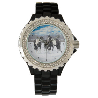 Black Paint Horses In Snow Watch