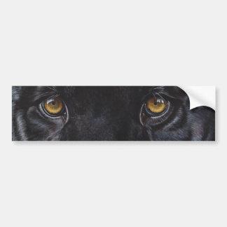 Black panther leopard eyes bumper sticker