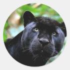 Black Panther Macro Classic Round Sticker