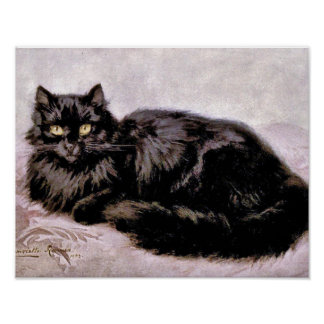 Black Persian Cat Poster