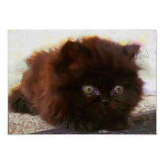 Black Persian Kitten Poster