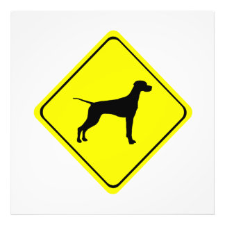 Black Pointer Dog Silhouette Caution Crossing Sign Photo Print
