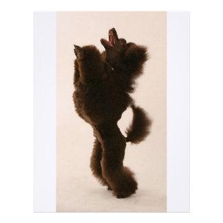 black poodle dancing.png letterhead