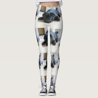 black pug flat leggings
