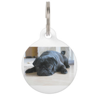 black pug flat pet ID tag