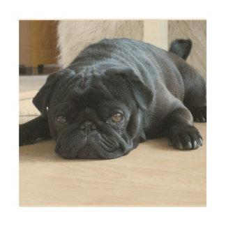 black pug flat wood print