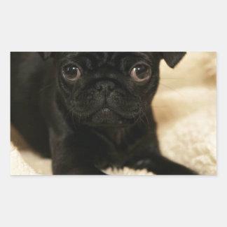 Black Pug Puppy Sticker