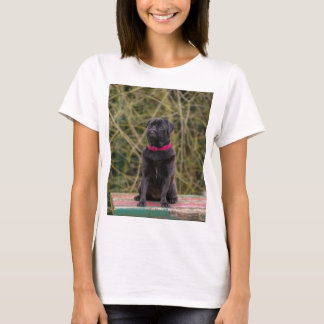 black pug sitting T-Shirt