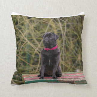 black pug sitting throw pillow