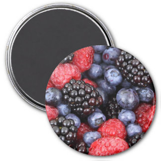 Black Raspberries and Blueberry Fruit Magnet