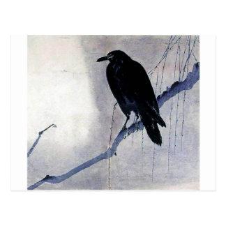 Black Raven Bird Antique Postcard