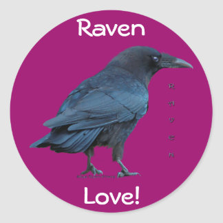 Black Raven Collection III Round Stickers