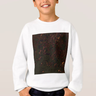 black red specks sweatshirt