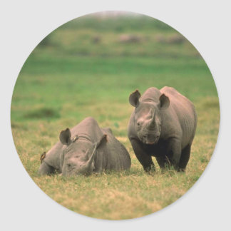 Black Rhino - Mother With Large Calf Round Sticker