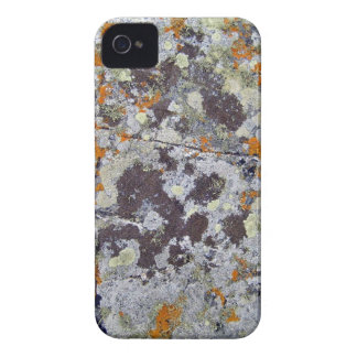 Black Rock with Orange and White Lichens iPhone 4 Cover