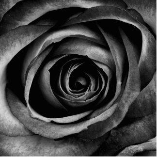 Black Rose Flower Floral Decorative Vintage Photo Sculpture Keychain