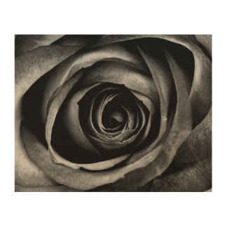 Black Rose Flower Floral Decorative Vintage Wood Prints