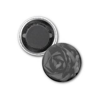 Black Rose Magnet