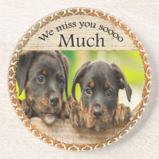 Black Rottweiler cute puppy dogs with sad faces Coaster