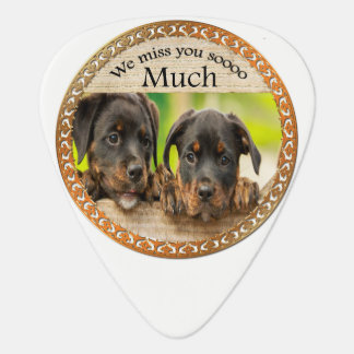 Black Rottweiler cute puppy dogs with sad faces Guitar Pick