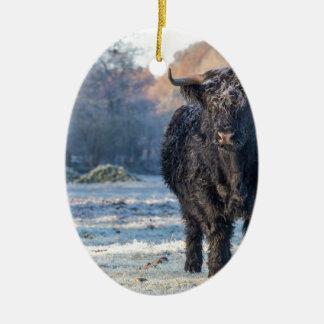 Black scottish highlander cow in winter landscape ceramic ornament