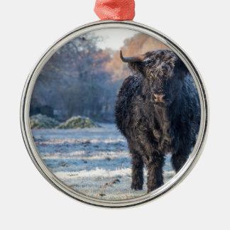 Black scottish highlander cow in winter landscape metal ornament